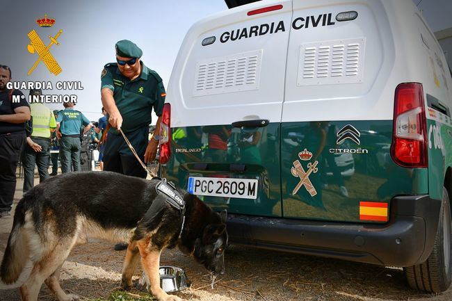 "Así controlará la seguridad festival ""Dreambeach 2019"" la Guardia Civil"
