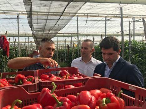 """Enrique Moreno: """"Ciudadanos es el gran aliado de la agricultura en Andalucía"""""""