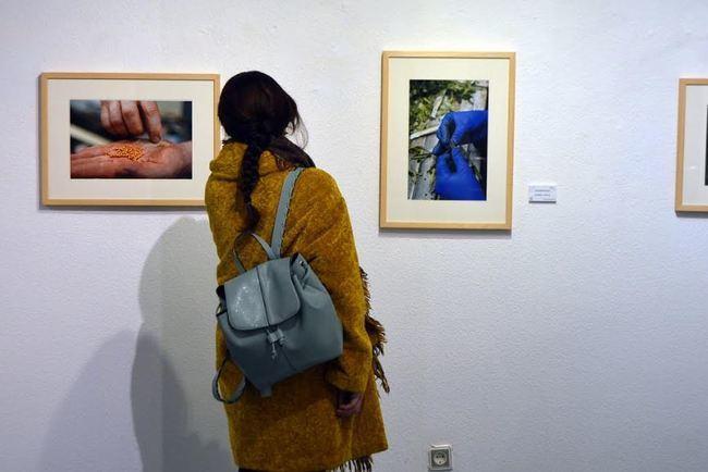 El Museo de Arte Espacio 2 hace un recorrido fotográfico por el campo almeriense