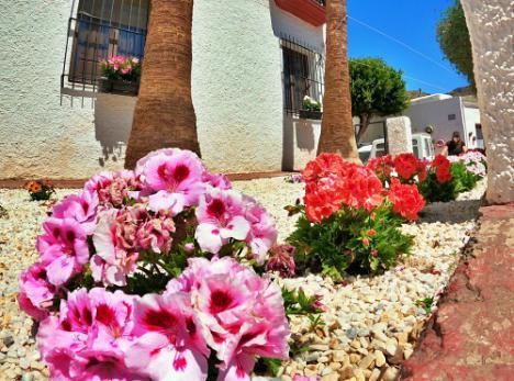 'Flores De Mayo' para la primavera de La Villa De Vícar