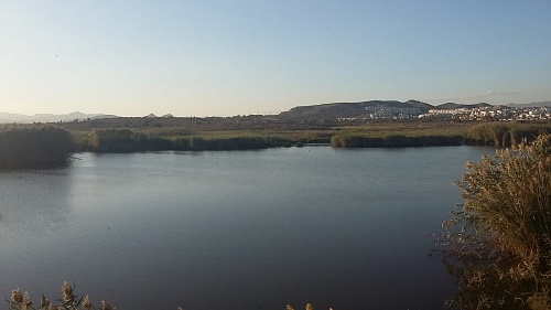 El PSOE de Vera se felicita por el impulso dado a la laminación del río Antas