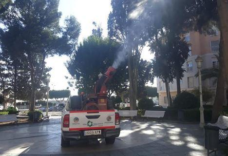 Labores preventivas contra la oruga procesionaria en Adra