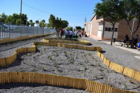 El CEIP Federico García Lorca Relanza la Reforestación De La Sierra De Gádor