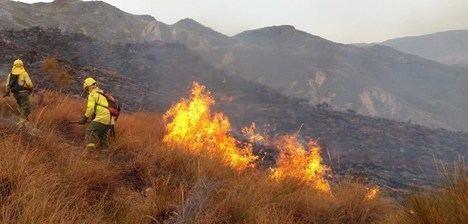 Extinguido el incendio declarado en el barranco Cortijo de la Viña de Rioja