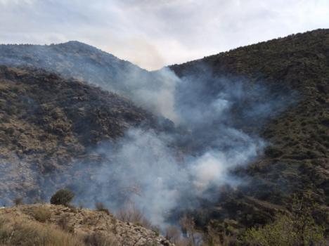 Infoca da por estabilizado el incendio declarado en el Barranco de Lotrines en Abrucena