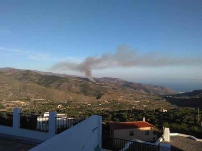 Extinguido el incendio forestal declarado el viernes en Enix