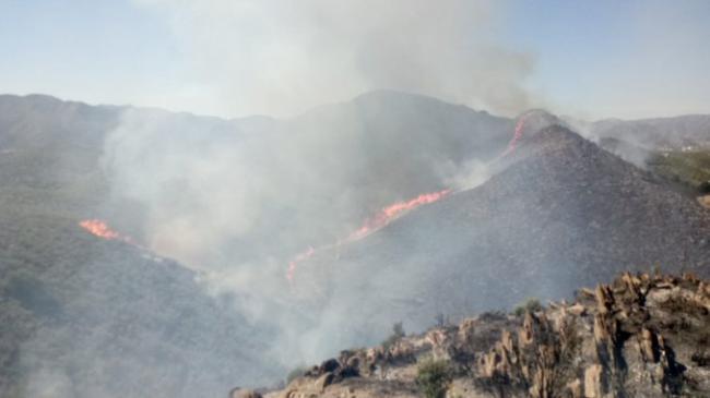 Infoca da por estabilizado el incendio en Berja y por controlado un segundo fuego en Lubrín