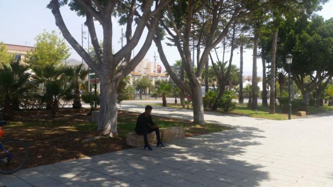 Intensificado En Acondicionamiento De Plazas Y Parques De Vícar