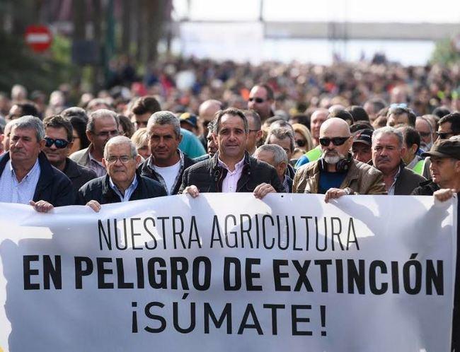 """Juanjo Segura: """"El Ayuntamiento está al lado de los agricultores"""""""