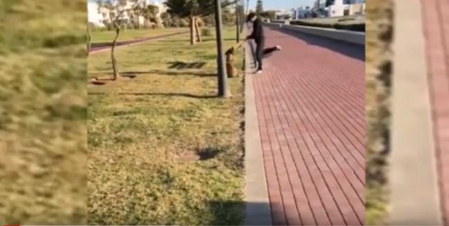 Maltrata a un animal y agrede a tres policías en El Ejido