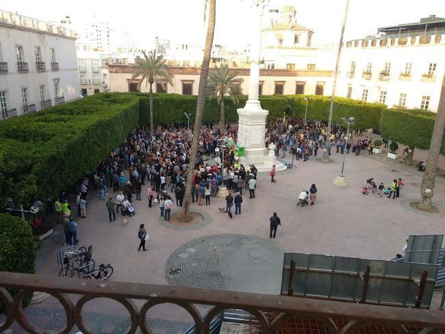 Escasa afluencia a la concentración en defensa de los árboles y el Monumento de la Plaza Vieja