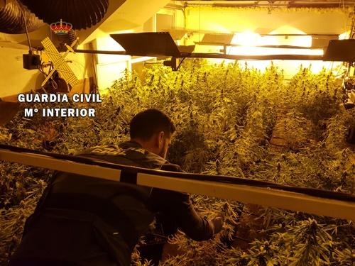 Dos detenidos por tener una plantación de marihuana indoor en Almerimar