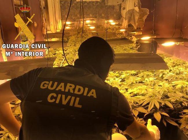 La Guardia Civil localiza una plantación indoor de marihuana con 114 plantas