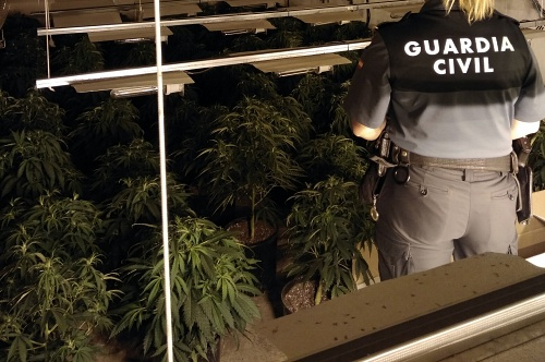 La Guardia Civil detiene al responsable de una plantación de marihuana en Roquetas de Mar