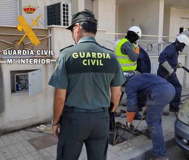 22 enganches de luz ilegales para mantener 835 plantas de marihuana en Huércal de Almería