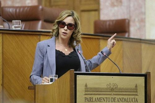 López (Cs) destaca el esfuerzo almeriense para salir de la crisis del #COVID19