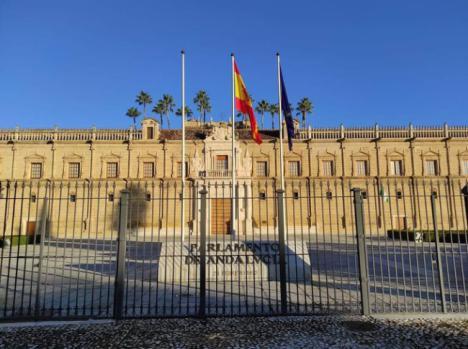 La 'casual' rotura de la bandera andaluza en el Parlamento incendia las redes