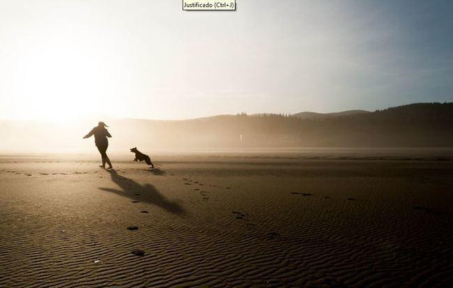 Conoce la única playa habilitada para perros en Almería