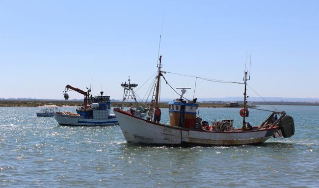 La Junta reclamará a Bruselas un plan que salvaguarde la pesca de arrastre del Mediterráneo