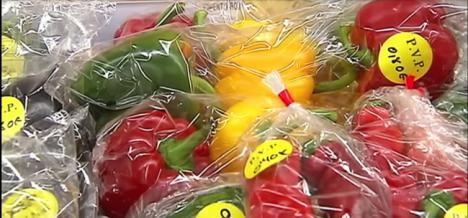 La mitad de las hortalizas andaluzas exportadas son almerienses