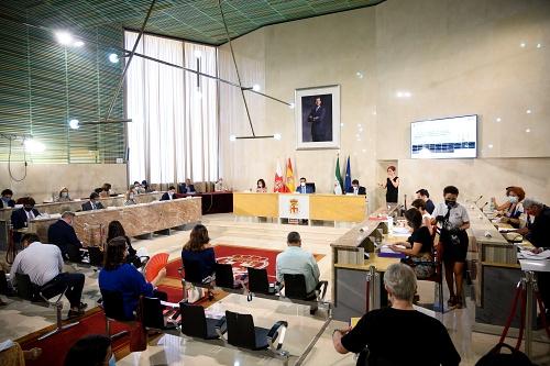 La nueva Ordenanza de Subvenciones del Ayuntamiento de Almería aprobada con la abstención de Vox