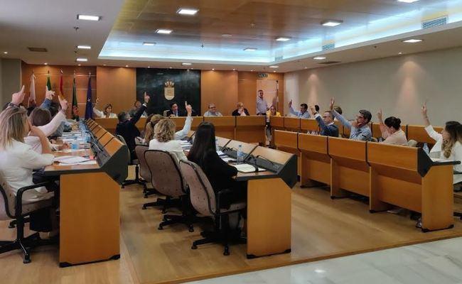 Solo Vox rechaza en El Ejido una moción para mantenerse en VioGen