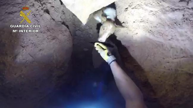 Guardia Civil rescata a un perro perdidon el interior de una cueva de Fuente del Royo