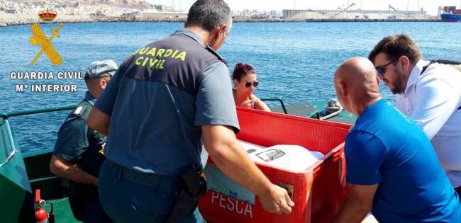 Guardia Civil, Equinac e Isub sueltan una tortuga que tras dos años de recuperación