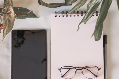 5 plantas que ayudan a reducir el estrés y mejoran la productividad en tu espacio de teletrabajo