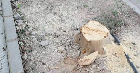Podemos acusa a ADIF de talar árboles para el soterramiento
