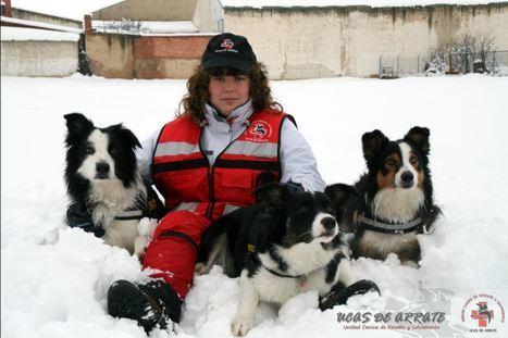 Turre acoge este sábado la exhibición de una unidad canina especializada en personas desaparecidas