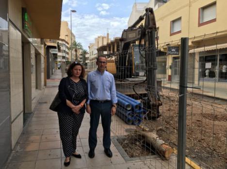 Ciudadanos denuncia la tala indiscriminada de árboles en El Ejido