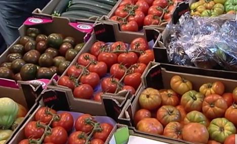 Almería saca músculo y exporta el 65% de las hortalizas andaluzas